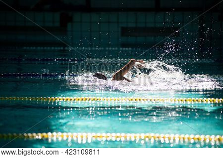 Swimmer Swims Freestyle In The Pool In Beautiful Sunlight