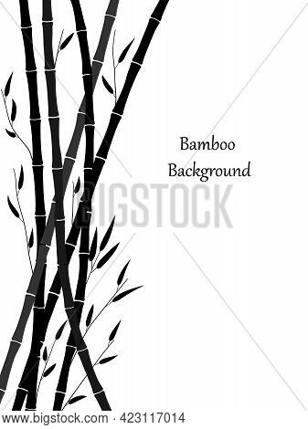 Bamboo Background. Minimal Design With Bamboo Stems And Leaves. Monochrome Floral Drawing. Black Dra