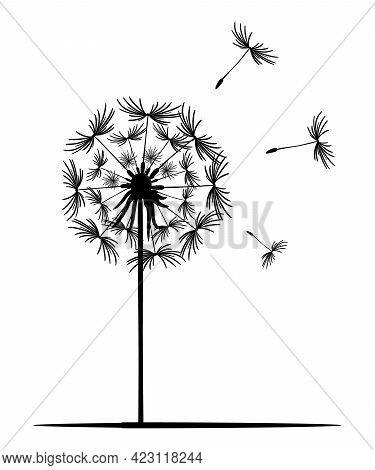 Dandelion Flower. Black Silhouette Of A Dandelion On A White Background. Lonely Plant, Straight Stem