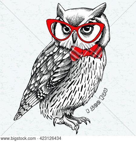Inspiration Owl Logo, Owl Logo Design, Owl Mascot Design, Owl Character Design Vector