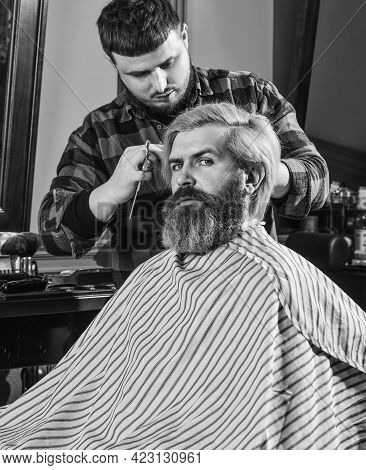 Handsome Male. Barber Tools In Barbershop. Handsome Hairdresser Cutting Hair Of Male Client. Hairsty