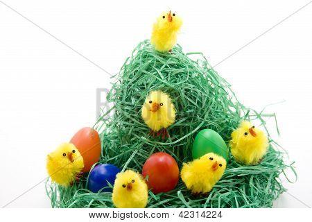 Chicks with Eastereggs in Easter nest