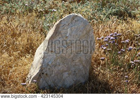 Stones Lie In A City Park On The Mediterranean Sea In Northern Israel