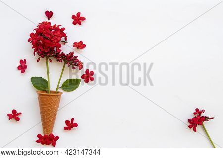 Red Flowers Rubiaceae Local Flora Of Asia Arrangement Flat Lay Postcard Style On Background White
