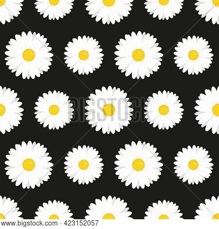 Camomile, Daisy Flower Cute Cartoon Style Vector Seamless Pattern Background For Fabric And Nature D
