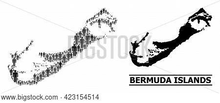 Map Of Bermuda Islands For Demographics Applications. Vector Demographics Collage. Collage Map Of Be