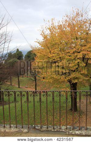Autumn In Boboli Gardens