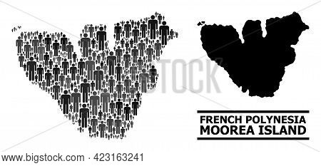 Map Of Moorea Island For Demographics Promotion. Vector Demographics Collage. Collage Map Of Moorea