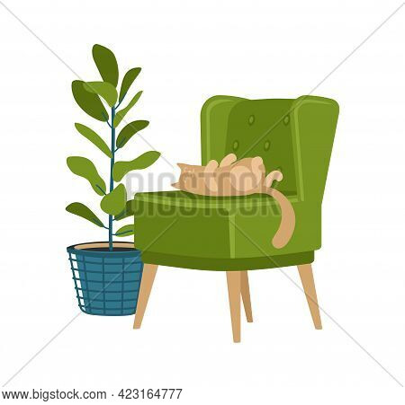 Retro Soft Chair And Ornamental Plant In Pot. Vintage Minimalistic Armchair With Sleeping Cat. Tropi