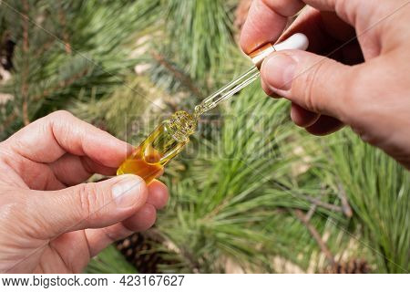 Woman Hands Holding Small Glass Bottle With Coniferous Spa Aromatic Essential Oil On Blurred Green B