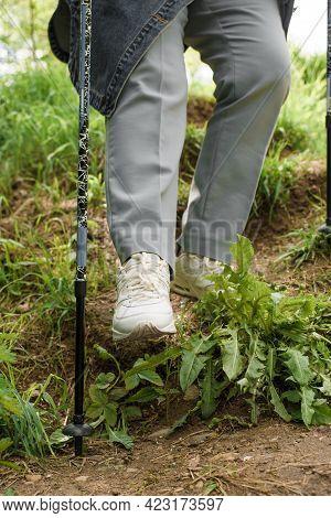 Senior Woman Trekking In Nature. An Elderly Woman Walks Down The Hill Using Walking Sticks. Close-up