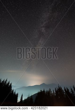 Magnificent View Of Night Starry Sky Over Coniferous Wood In Mountains. Beautiful Landscape Of Night