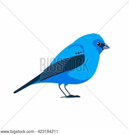 Indigo Bunting Is A Small Seed-eating Bird In The Cardinal Family, Cardinalidae. Blue Bird Cartoon F