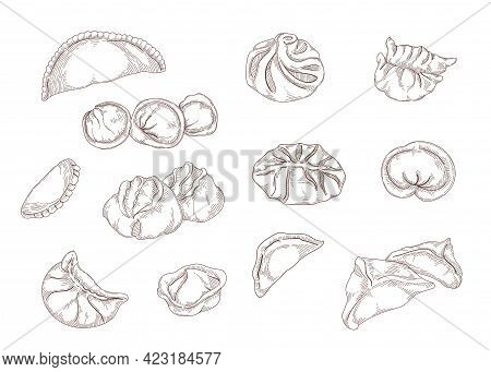 Vintage Hand Drawings Of Dumplings Of Various Shapes. Pelmeni, Ravioli From Dough Isolated On White