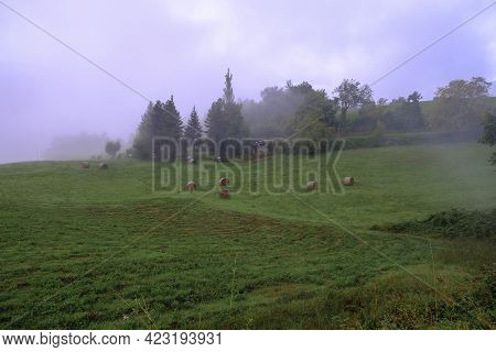 Misty Morning In The Field. Farmhouse And Rural Road In Fog. Rural Scene. Agricultural Field