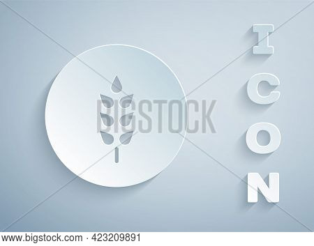 Paper Cut Cereals Set With Rice, Wheat, Corn, Oats, Rye, Barley Icon Isolated On Grey Background. Ea