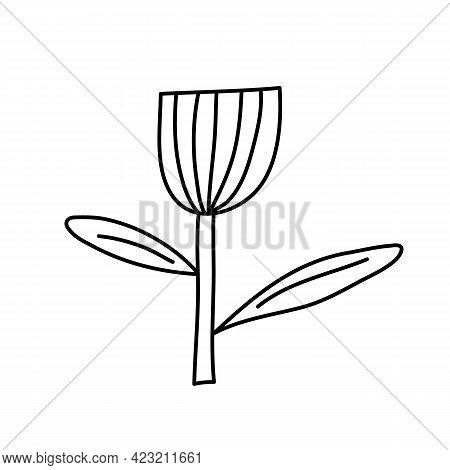 Vector Stylized Spring Flower With Monoline Style. Scandinavian Illustration Art Element. Decorative