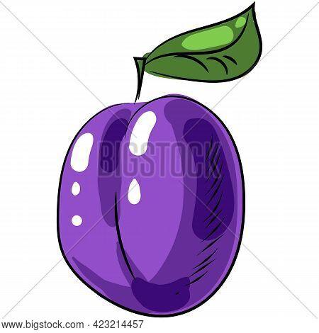 Plum Vector Icon Illustration Ripe Fruit Prune Isolated