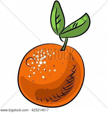 Vector Orange Citrus Fruit Illustration Icon On White