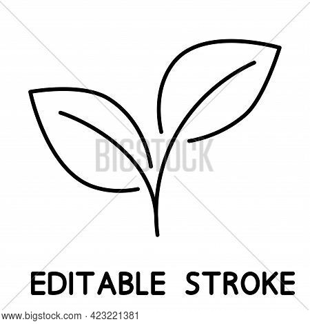 Growing Plant. Two Outline Leaves. Environmental Protection Concept, Eco Natural Farm Concept, Earth