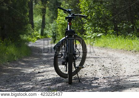 Rear Wheel Of A Mountain Bike. A Mountain Bike Stands On A Trail In A Summer Forest. Cycling Outdoor