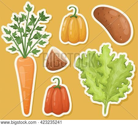 Set Of Isolated Vector Images Of Vegetables And Herbs For Salad. A Collection Of Bright Healthy Vita