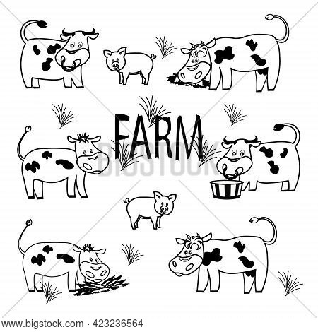 Farm Cow  Set.doodle Cow Family.farm With Cow Bull Calves Eat Grass Drink Water.outline Set Of Farm