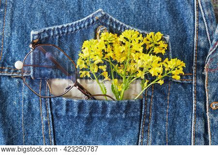 Eye Glasses And Yellow Wildflowers In The Pocket Of A Blue Denim Jacket, Trend Eyes Glasses