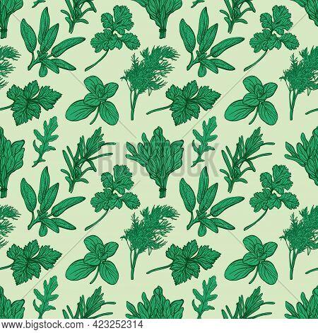 Italian And Provencal Herbs Seamless Pattern. Mediterranean Seasonings And Herbs Pattern. Hand-drawn