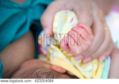 Hand The Sleeping Baby In The Hand Of Mother Close-up, Extreme Closeup Of A Baby's Hand In Mother's