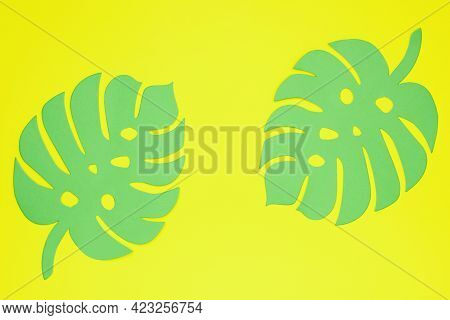 Two Green Leaves Of Monstera On A Yellow Background. Paper Cut Monstera. Tropical Exotic Summer Conc