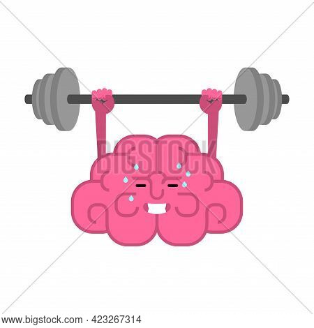 Brain And Barbell. Boost Your Brains. Brain Gym