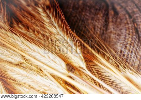 A Bunch Of Golden Ears Of Rye On A Fabric Of Coarse Linen Threads.