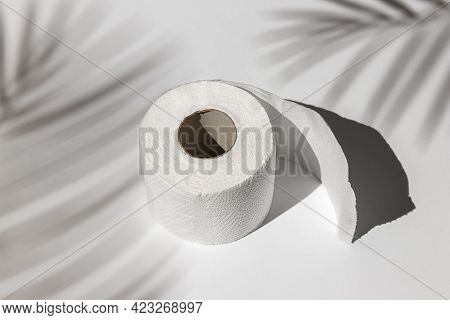 Roll Of A White Toilet Paper Isolated On A Gray Background Under A Palm Tree Shadow Close-up. Hard S