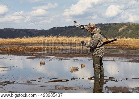 A Hunter With A Duck Decoy In His Hand Stands In Muddy Shallow Water. He Prepares For A Duck Hunt An