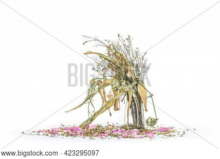 wilted flowers bouquet in a clear glass vase ,Vintage filtered