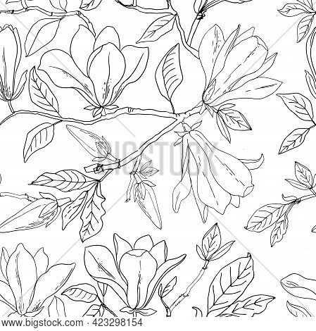 Flower Pattern Magnolia. Vector Sketch Of Flowers By Line On A White Background. Decor