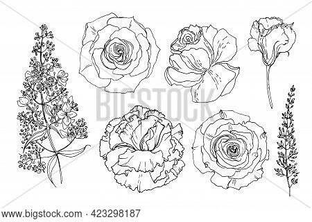 Flowers Line Drawn On A White Background. Vector Sketch Of Flowers. Lisianthus, Eustoma, Roses, Hydr
