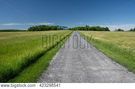 Entrance Path On A Canadian Farm In Quebec