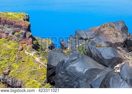 Santorini, Greece Panorama With Big Volcanic Stone Rock And Caldera, Sea, Flowers