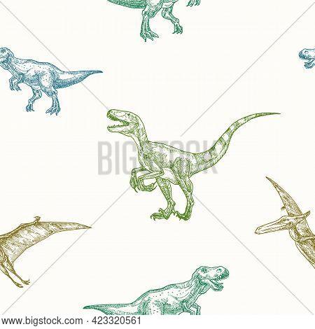 Hand Drawn Dinosaurs Vector Seamless Background Pattern. Tyrannosaurus, Velociraptor And Pterodactyl