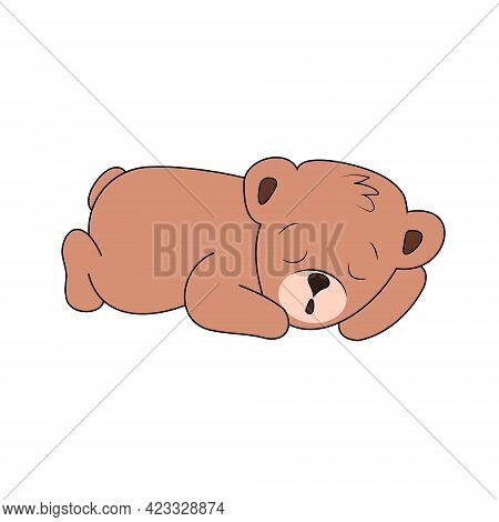 Cute Sleeping Brown Bear Cub Isolated On White Background