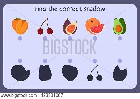 Matching Children Educational Game With Food - Persimmon, Cherry, Fig, Grapefruit, Avocado. Find The