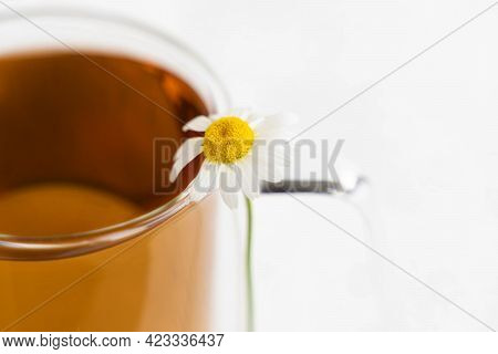 Chamomile Tea And Chamomile In Glass Mug On White Cement Table. Herbal Tea. Side View