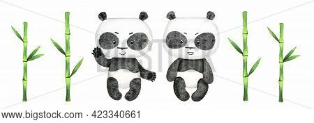 Baby Panda And Green Bamboo Watercolor Illustration Isolated On White Background. Cute Panda Bear Cl