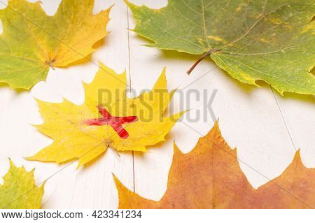 Yellow Maple Autumn Leaf Marked With Red Paint On A White Wooden Table. Mark On A Leaf Of A Tree