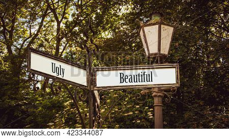 Street Sign The Direction Way To Beautiful Versus Ugly