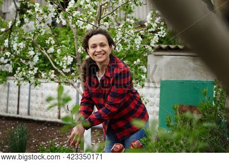 Mature Mixed Race Woman Gardener Cute Smiling Working In Vegetable Garden On Spring Day. Hobby, Leis