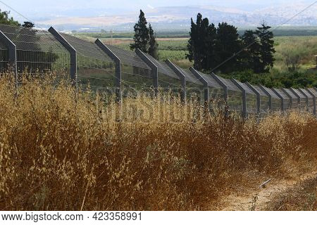 Green Plants And Flowers Grow Along A Tall Fence In A City Park In Northern Israel