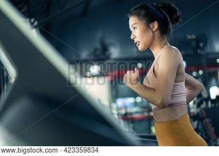 Asian Young Athlete Sportswoman Practice Workout To Maintain Muscle In Gym Or Fitness Club. Active A